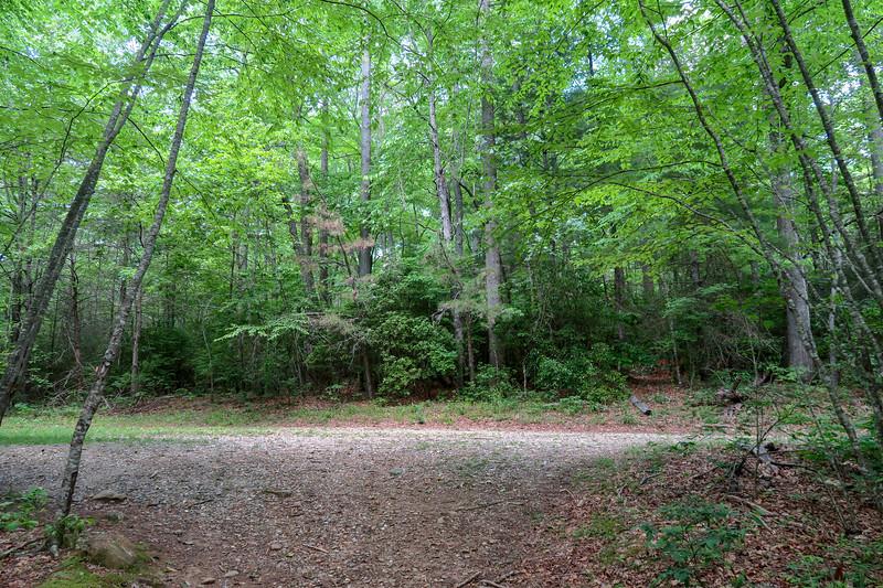 Fletcher Creek Trail @ Forest Road 5097 -- 2,830'