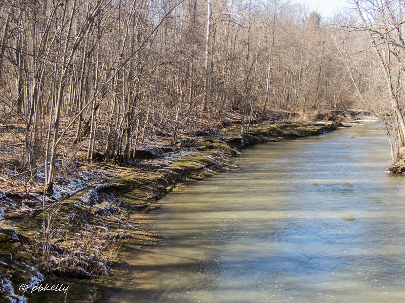Black River 030417-4.jpg