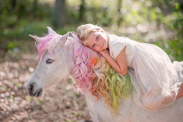 Coe Family unicorn March 2019