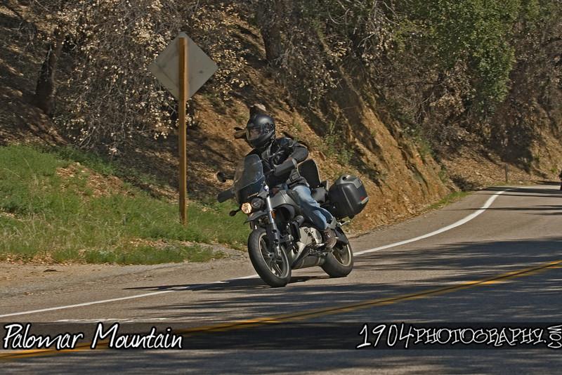 20090308 Palomar Mountain 144.jpg