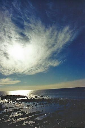 Abalone Cove Shoreline Park & Ecological Preserve: Trips