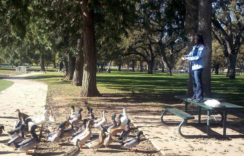 duck_queen.jpg