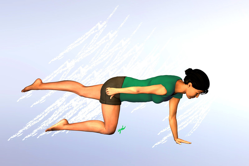Quadruped Position, Leg rais and opposite arm in neutral position (near hip).