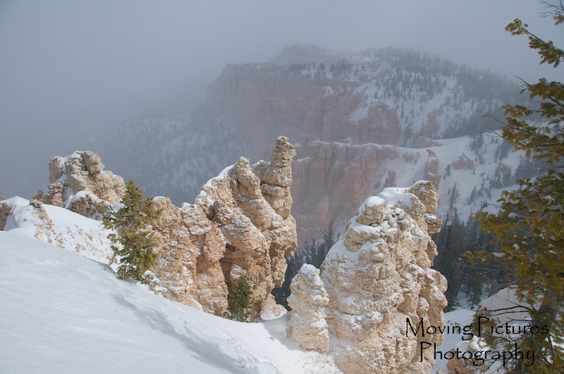 Bryce Canyon National Park - view from Rainbow Point