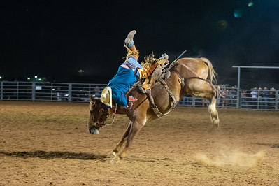 Oliver's Saddle Shop 3 in 1 Ranch Rodeo 2020