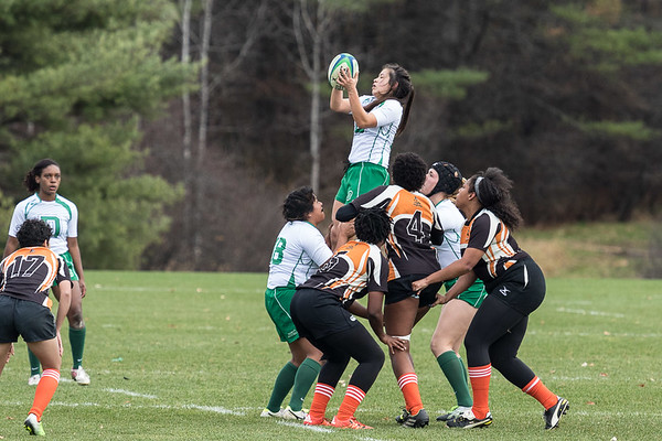 Dartmouth - Princeton 11-7-15  --  Available for personal use.