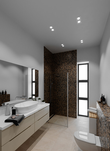 velux-gallery-bathroom-147.jpg