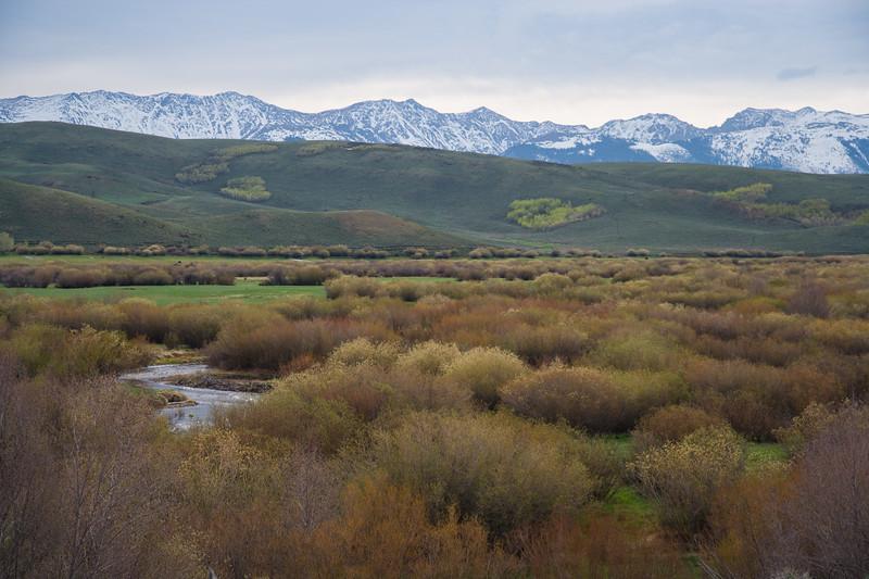 Colorado07-0113.jpg