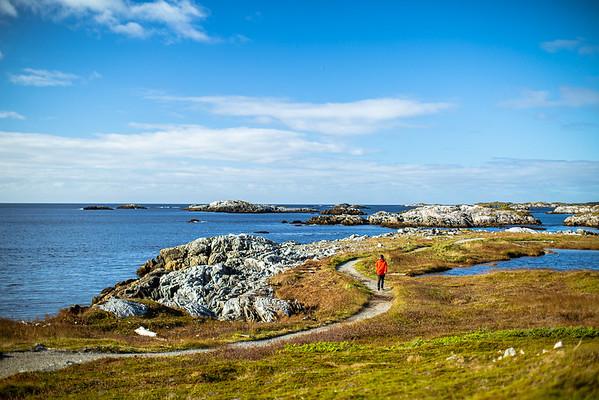 Harvey Trail — Isle aux Morts