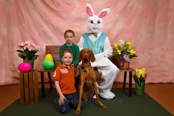 Easter Bunny Pets 2012