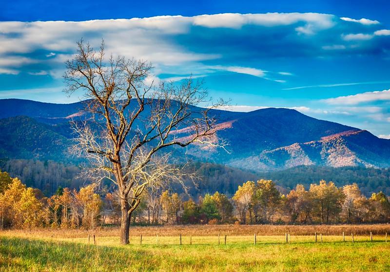 Smokey Mountains_Landscapes-3.jpg