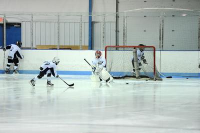 Blue Water Hockey League