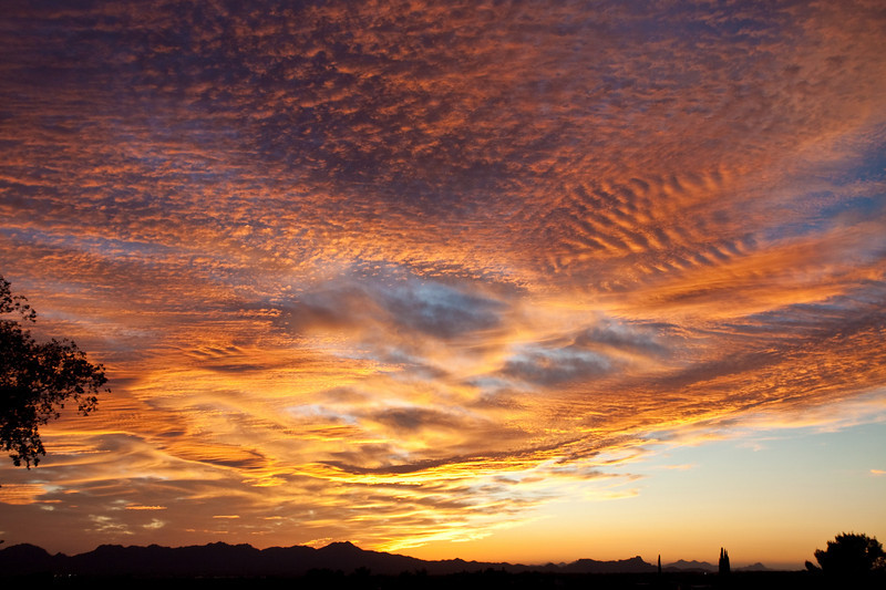 Tucson Sunsets
