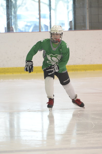 2019 Shamrock Skate