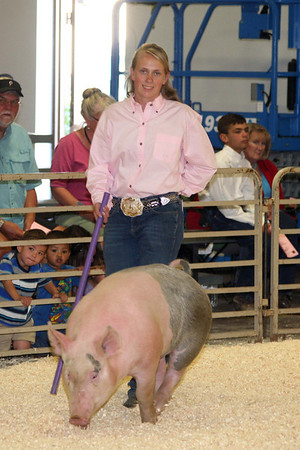 4H Swine and Sheep Shows