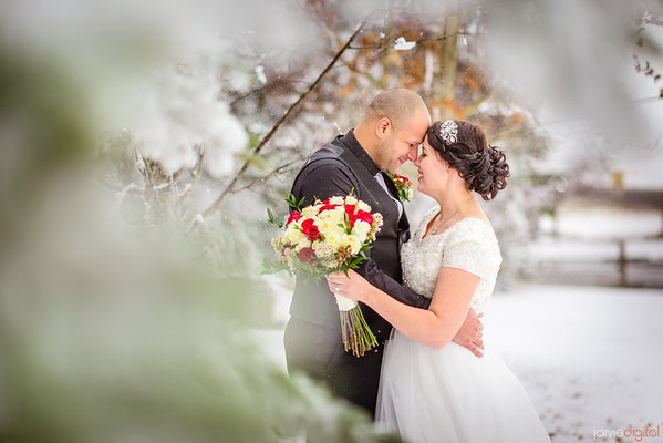 Winter Calgary Wedding