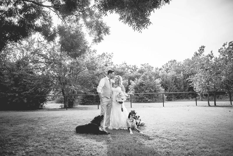 2014 09 14 Waddle Wedding-768.jpg