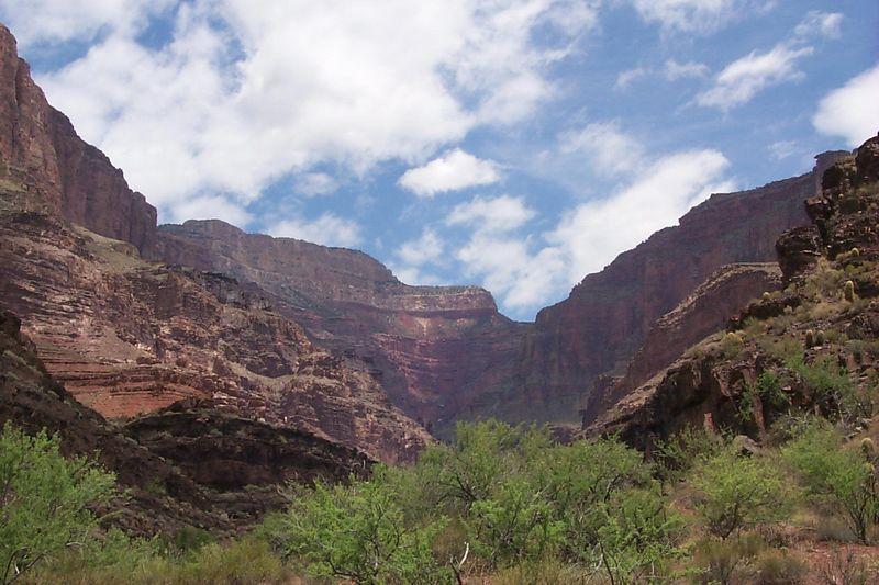 View up Stone Creek   (Jun 05, 1999, 01:13pm)