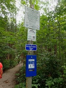 Lobb Trail and Maitland Woods Hike 2017