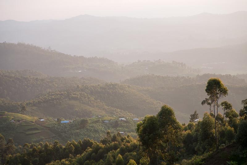 Nyugwe-Rwanda-72.jpg