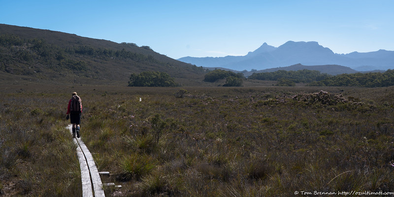 On the road to Scotts Peak Dam, with the Mt Anne massif in the background