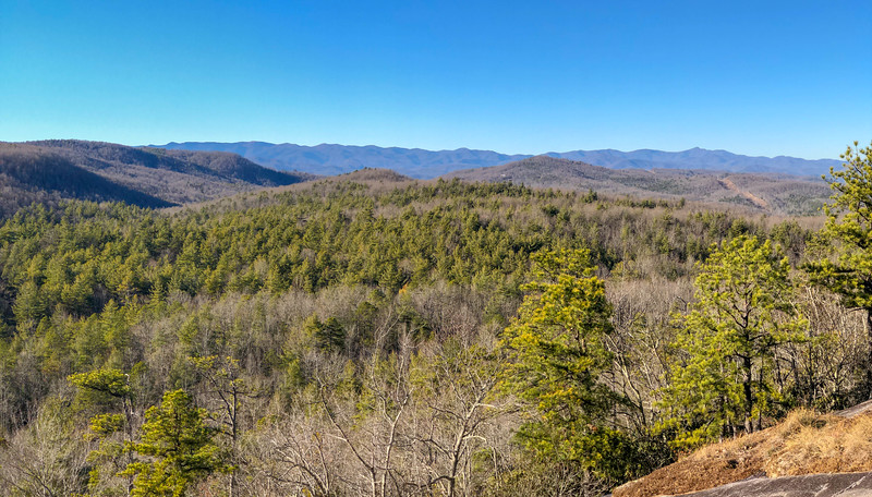 DuPont State Forest - Burnt Mountain/Cedar Rock Loop (1-5-20)
