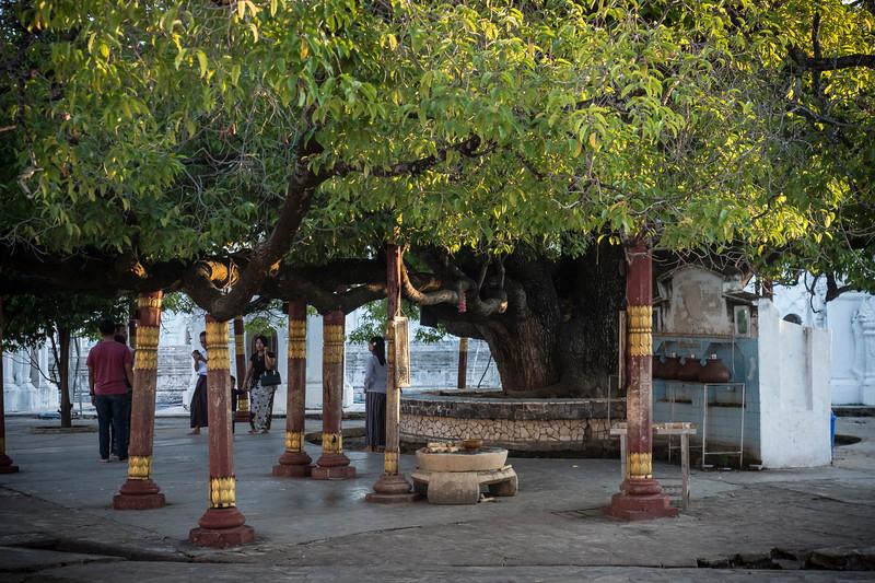 171812 Mandalay 2587.JPG