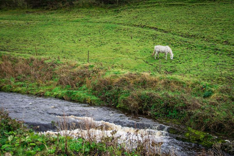 Ireland350.jpg
