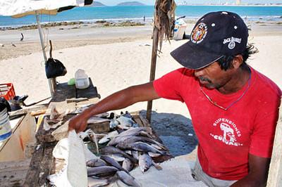 Slideshow - Mazatlan Malecon Fishermen
