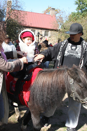 Pony Rides and Petting Zoo