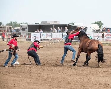 Patricia 2021 Wild Horse Race 1st Go