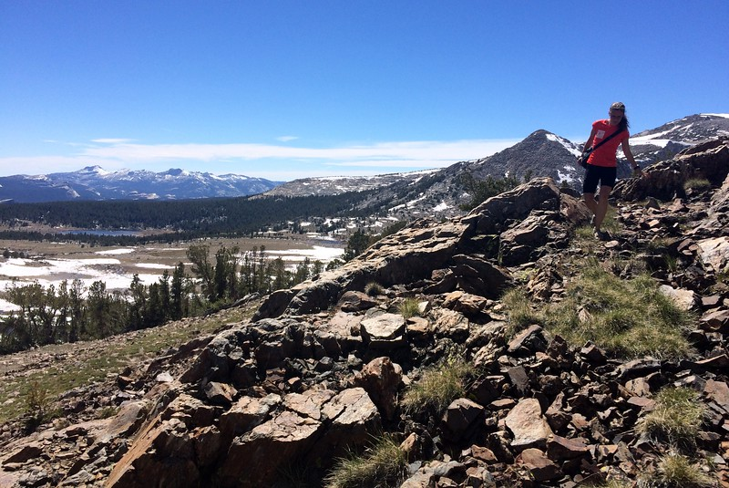 Coming down from Gaylor Peak