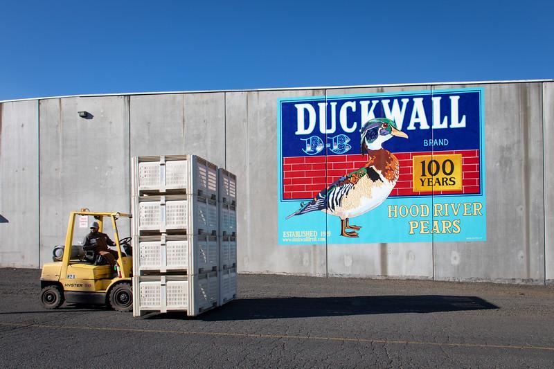 Duckwall20-1001.jpg