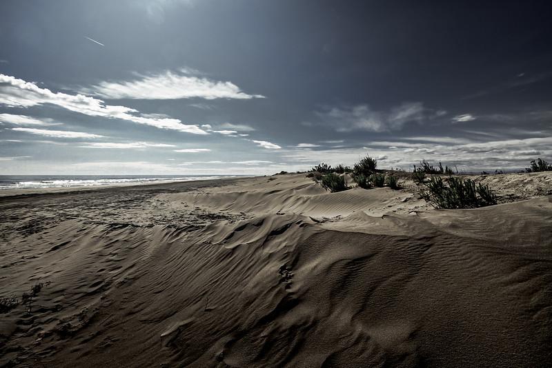 Dunes, punta banya, Sant Carles de la Ràpita (4)-Editar.jpg