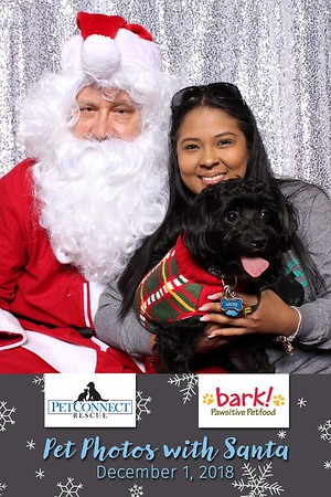 Pet Connect Rescue Pet Photos With Santa 2018