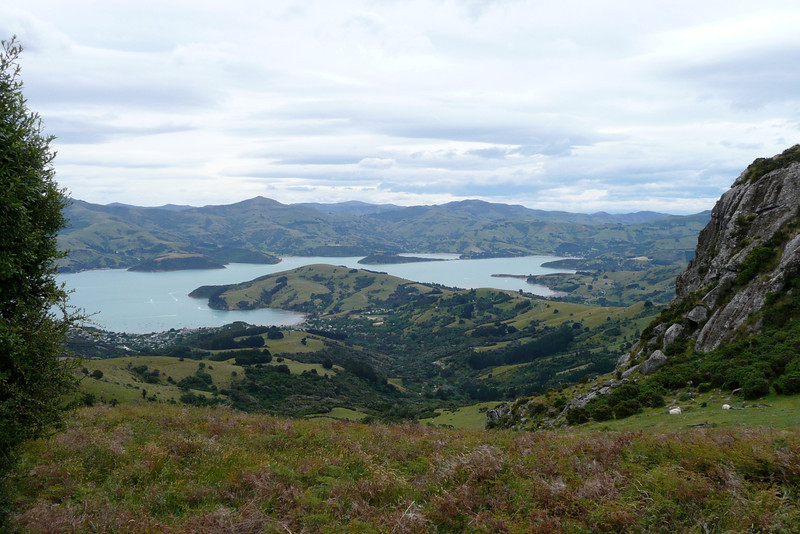 Akaroa Harbour. Summit Walk, Banks Peninsula