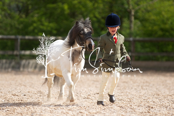 ODRC, Working Hunter, Showing. Friezland,6th May