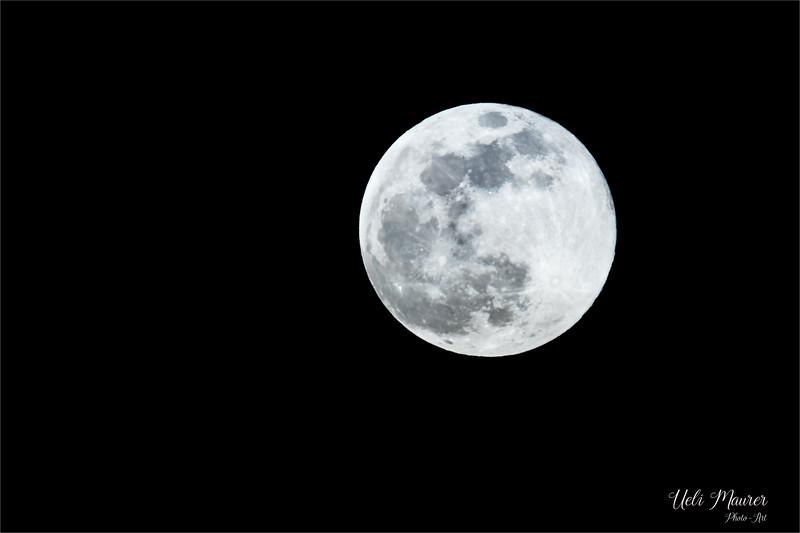 2019-02-19 Mond - 0U5A7401.jpg
