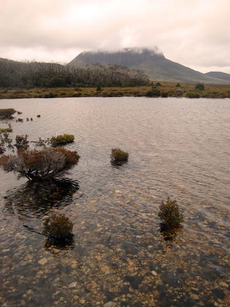 Mt Pelion West from Pine Forest Moor.jpg
