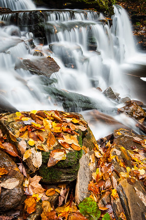Ricketts Glen State Park Pennsylvania