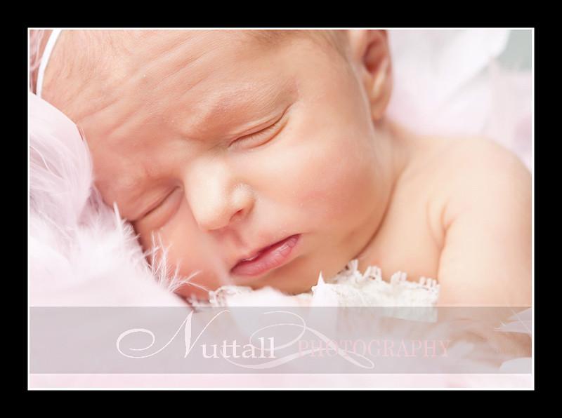 Olivia Newborn-102.jpg