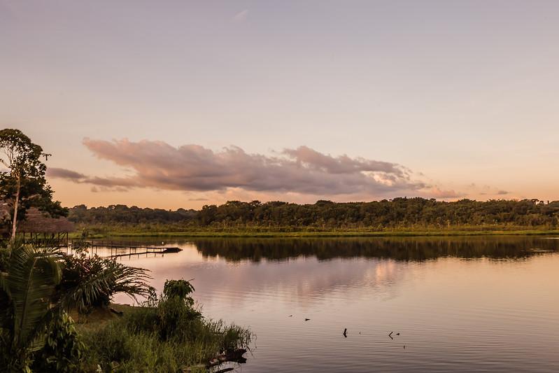 Parque Nacional Yasuni - Napo Wildlife Center - Lina Stock