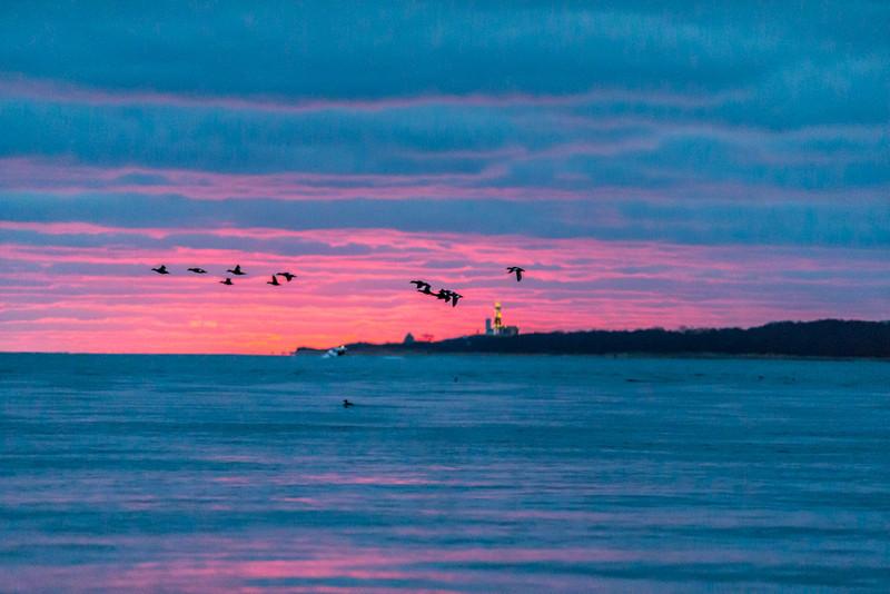 Long Island-110.jpg