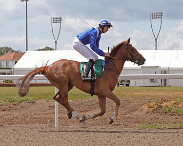 5 Chelmsford City June 8