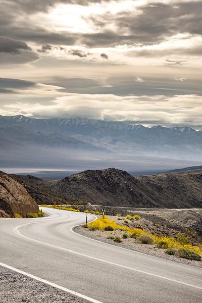 West-valley-Death-Valley-sunflowers-spring2017.jpg