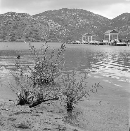 20190101 | Rolleiflex | Lake Poway | HP5+