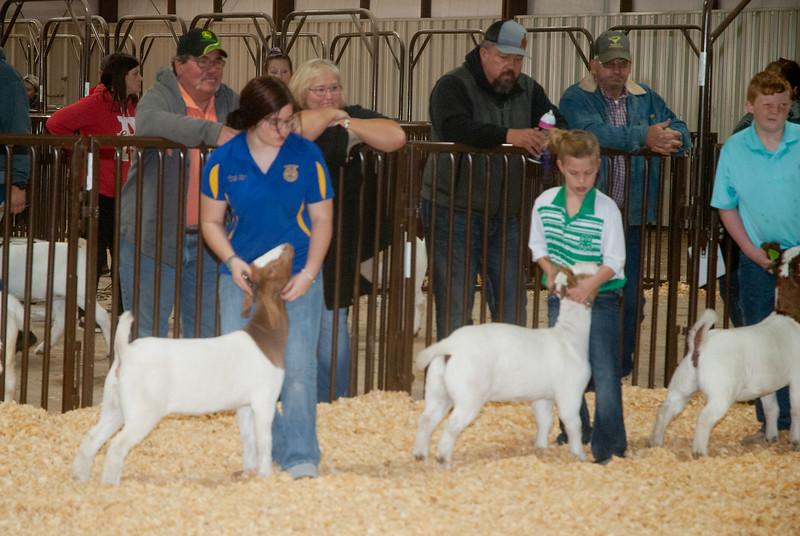 kay_county_showdown_goats_20191207-81.jpg