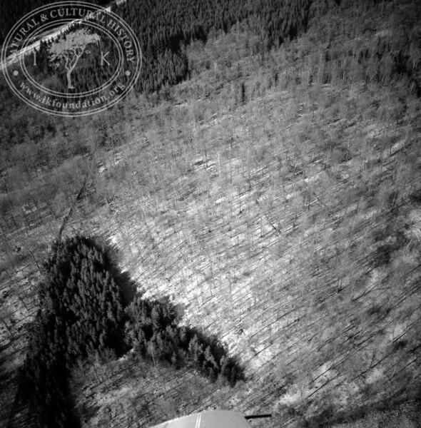 S Vätteryd | EE.1361