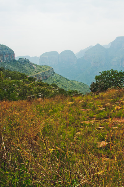Nature from Africa Photograph 324