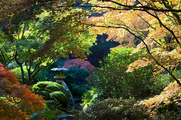 Portland, Oregon Japanese Gardens -Photography